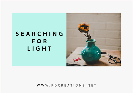 Searching for Light