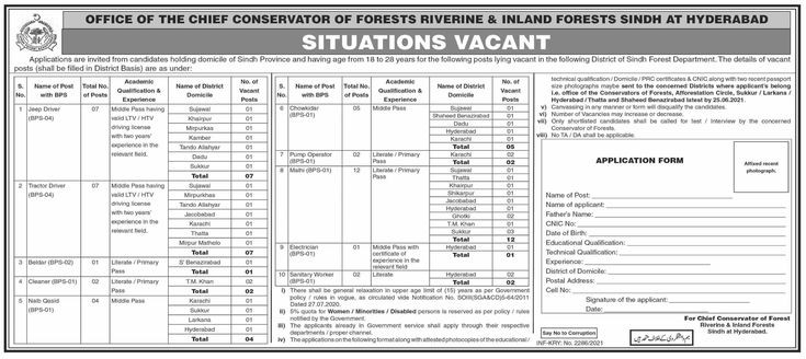 Office Of the Chief Conservator Of Forests Riverine & Inland Forests Sindh Hyderabad Jobs 2021