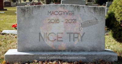 The reboot of MacGyver bit the dust. While there are official reasons, I suggest other factors that Hollywood elitists ignore that also contributed.