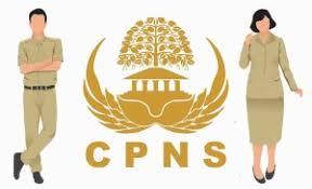 PENGUMUMAN HASIL SELEKSI CPNS FORMASI TAHUN 2018 KABUPATEN MAYBRAT