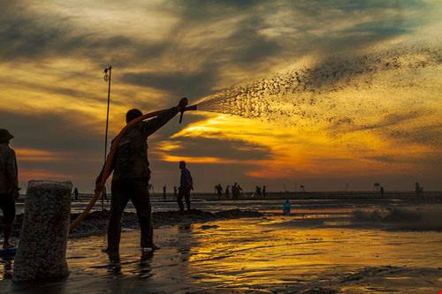 Chùm ảnh đẹp về bãi biển Đồng Châu Thái Bình Phần 1-5