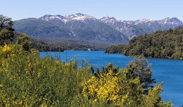Where to go birding in Patagonia: Blue lake and mountains near Bariloche Argentina on Ruta de Siete Lagos