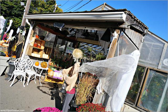 Decoraciones de Halloween en Wilson Farm, Lexington