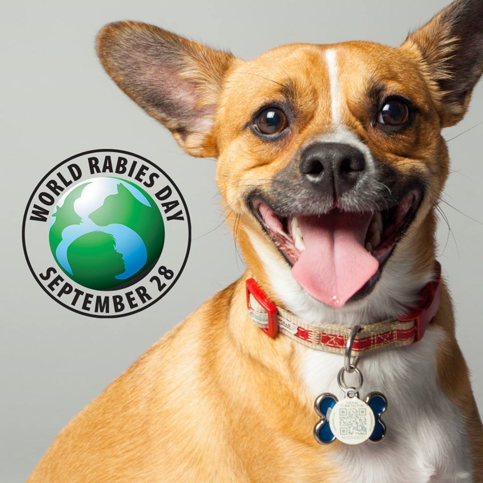 World Rabies Day Wishes Awesome Images, Pictures, Photos, Wallpapers