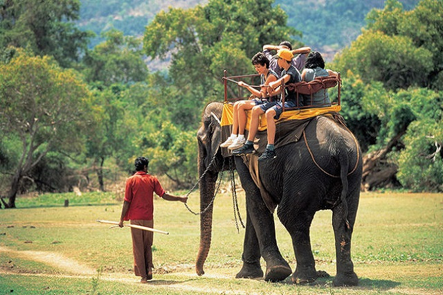 Find travel ideas for planning your holiday to Sri Lanka. Discover things to see and do, places to stay and more..