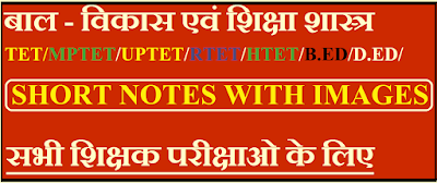 bal vikas study material for tet exam 5000+ facts