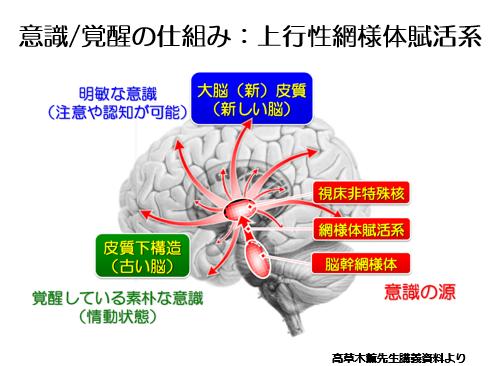 脳卒中リハビリのお勉強: 覚醒と...