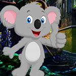 Games4King Pleasant Koala…