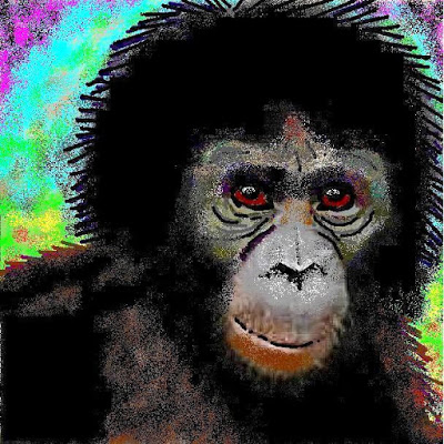 bonobo genetic traits One explanation for the cause of chimpanzee/bonobo genetic separation may have been the formation of the congo bonobo society characteristics: (kano 1992, 1996.