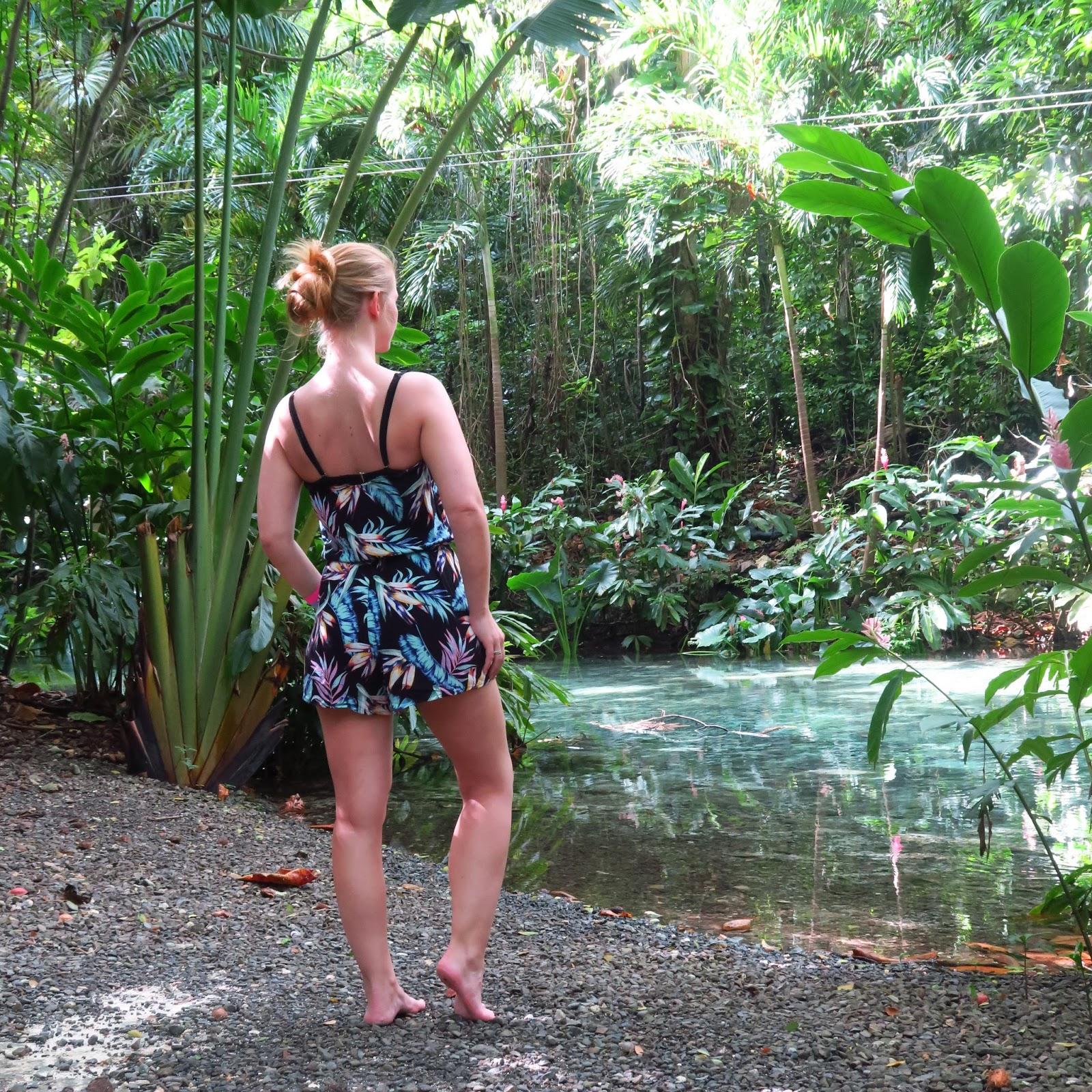 bahamas, cayman islands, chichén itzá, costa maya, cozumel, dunn's river falls, jamaika, karibik, kreuzfahrt, maya ruinen, mexiko, miami, msc divina, reisebericht, royal caribbean, travel, tulum, urlaub,