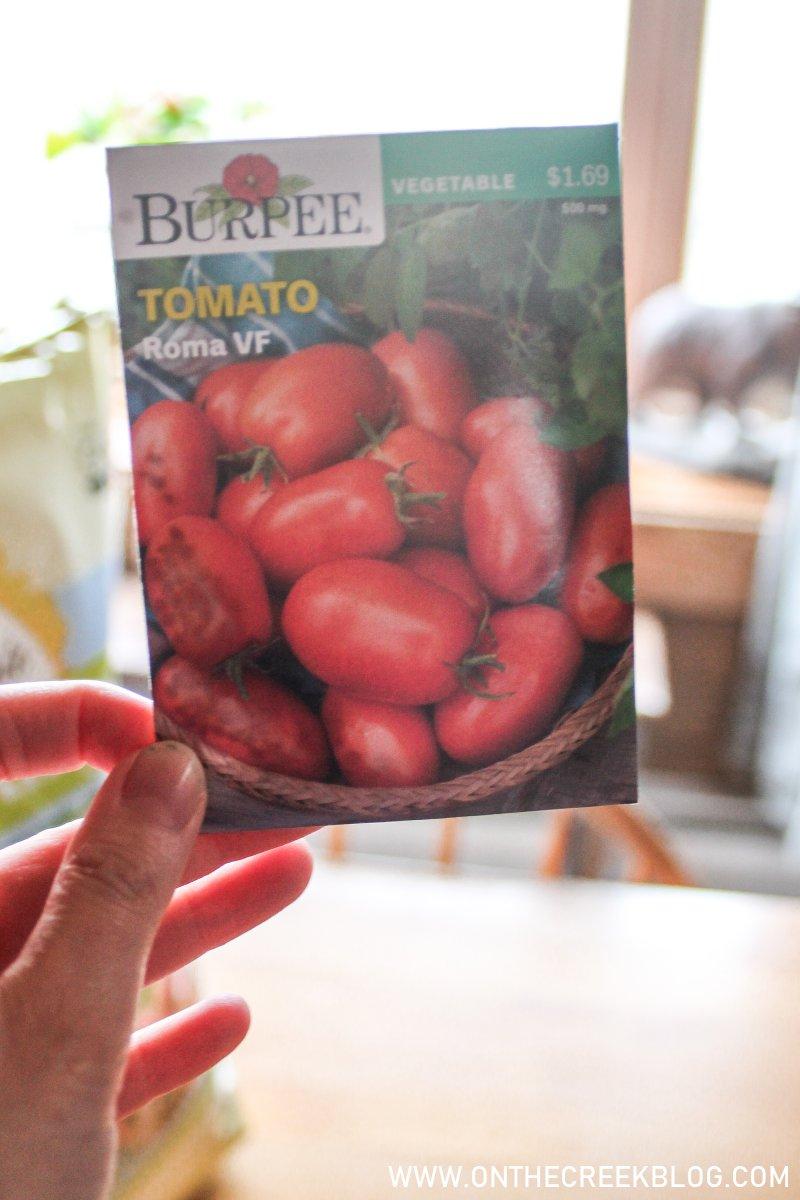 Planting Roma VF Seedlings | On The Creek Blog
