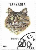 Selo Gato Maine Coon