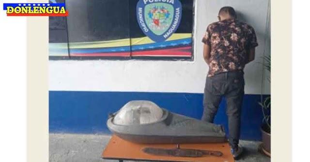 RIDICULEZ | Detenido en Naguanagua por robarse una luz de alumbrado público