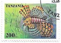 Selo Peixe Leão-zebra