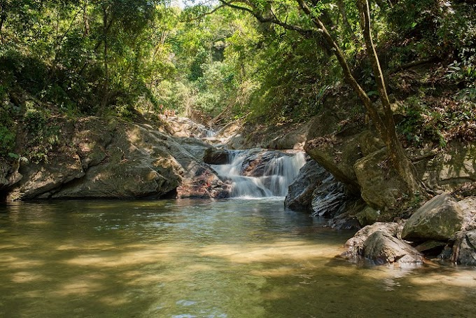 """Minca en el top 10 de los destinos """"más acogedores"""" de Colombia"""