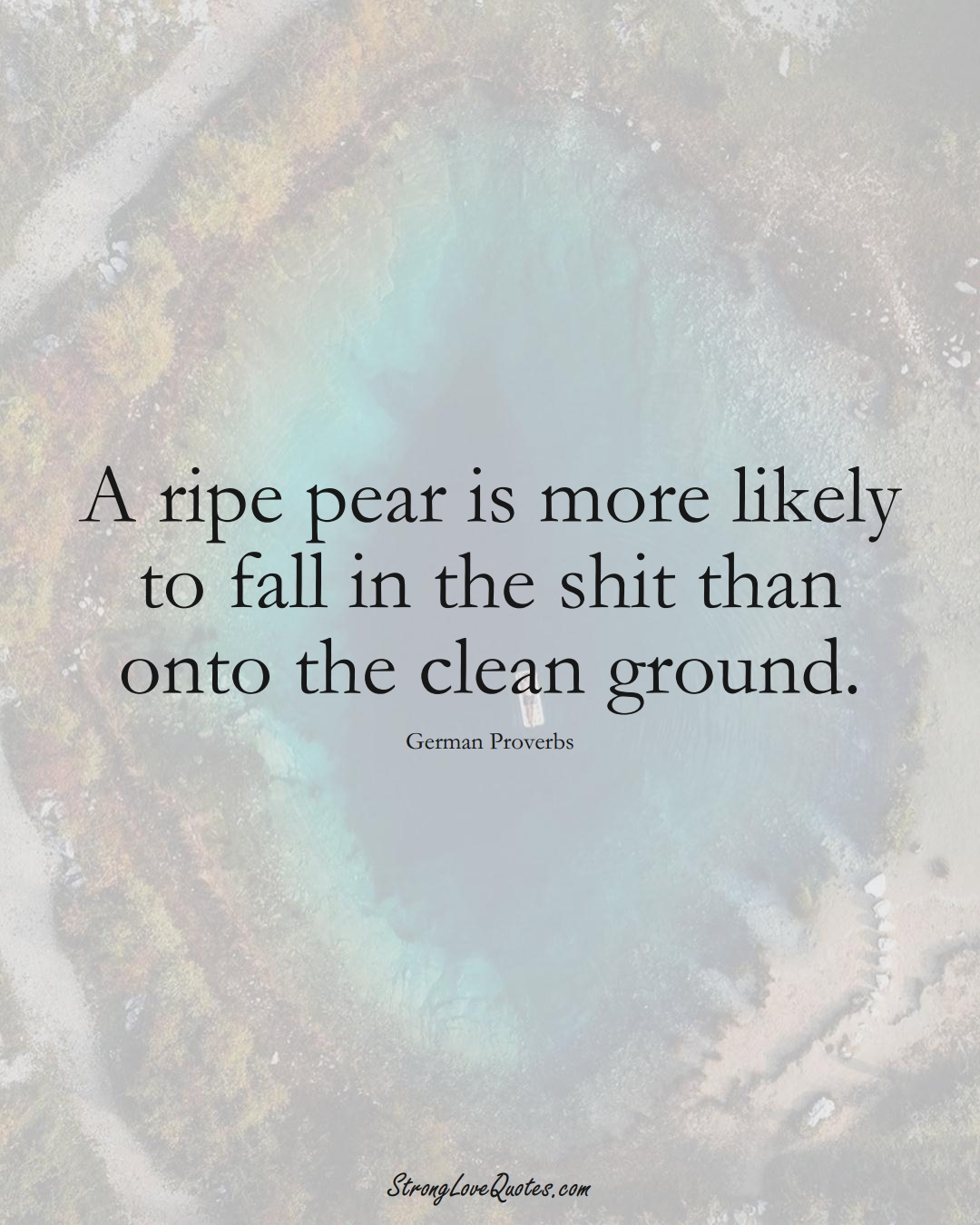 A ripe pear is more likely to fall in the shit than onto the clean ground. (German Sayings);  #EuropeanSayings