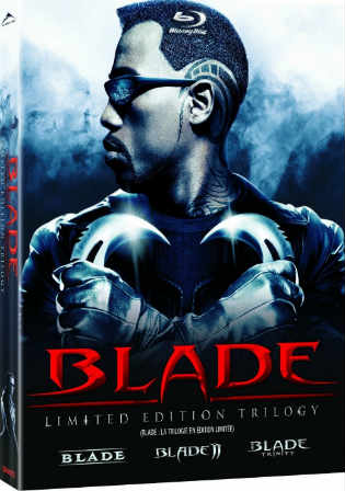 Blade 1998 BluRay 350MB Hindi Dubbed Dual Audio 480p Watch Online Full Movie Download bolly4u