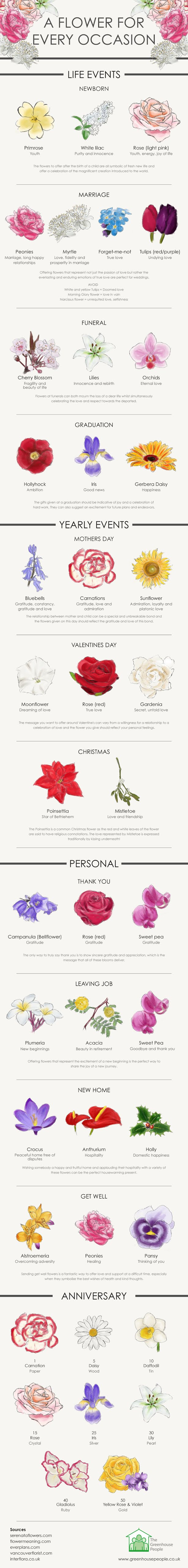 A Flower for every occasion #infographic