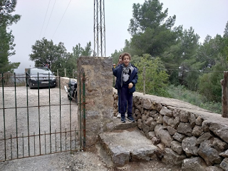 niños en Mallorca