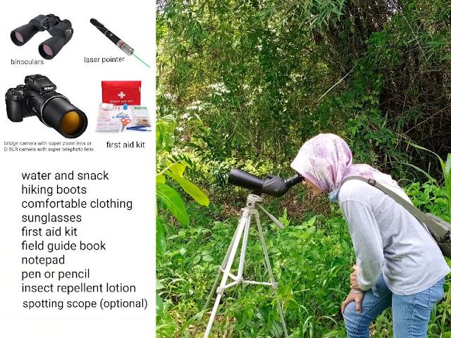 binoculars, camera, spotting scope for birding