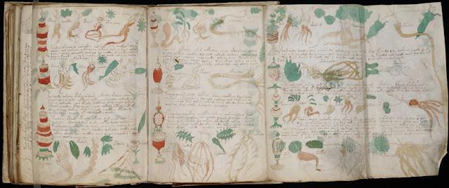 Voynich-Code-manuscript-amazing-sensational-discoveries