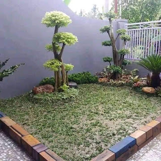 jasa Taman Landscape Minimalis - Borongan Bikin Taman Minimalis - Renovasi Taman Rumah