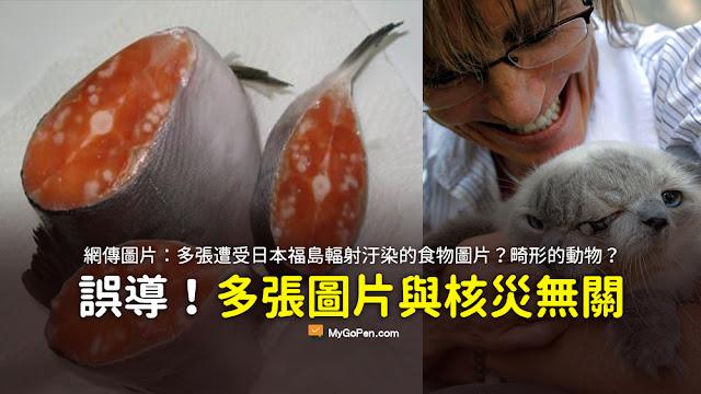 福島 核災 食物 輻射 污染 謠言 照片