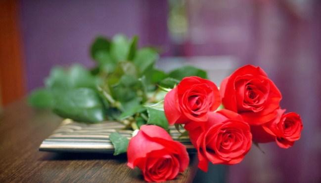Download 40+ Wallpaper Bunga Mawar HD Gratid