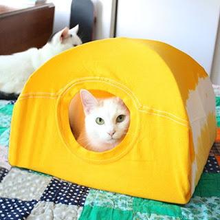 casita-para-gato
