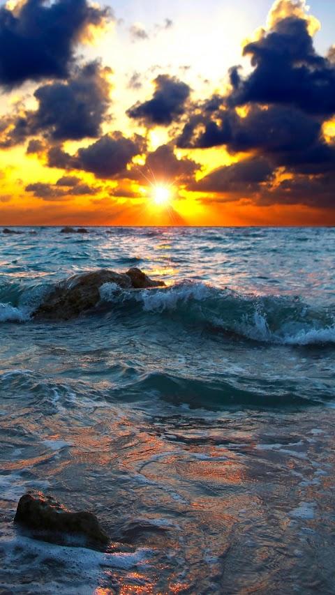 Con sóng thủy triều