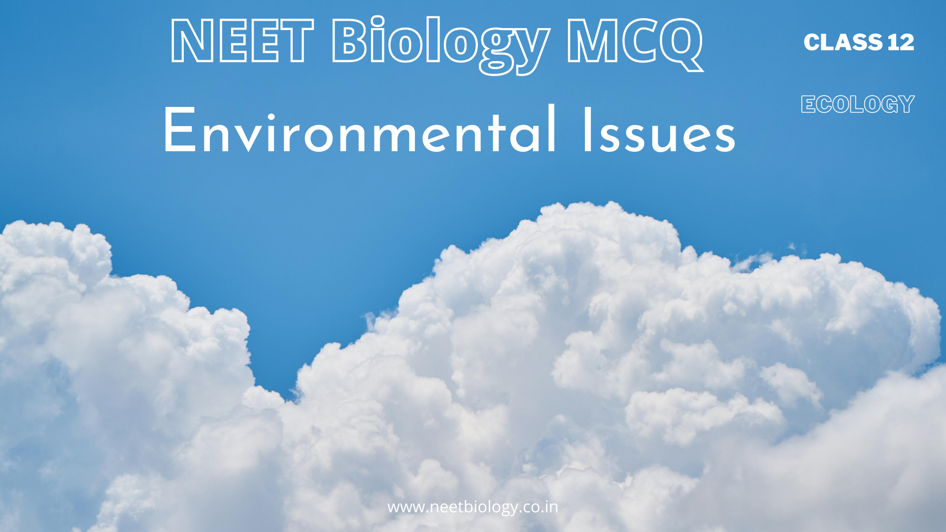 NEET Biology MCQ Class 12 Ecology  Environmental Issues Questions and Answers