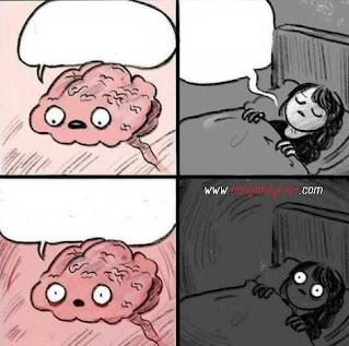 Sleeping Girl And Brain Meme Template