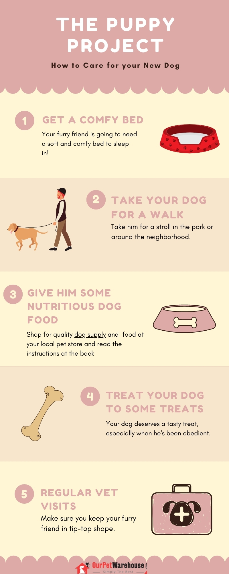How to care for your New Dog #infographic #Pets & Animal #Dogs #New Dog