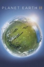 Planet Earth II S01E04 Deserts Online Putlocker