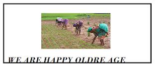 FEASIBILITY STUDY PRESENTED TO THE FEDERAL REPUBLIC OF NIGERIA  | Farm Energy