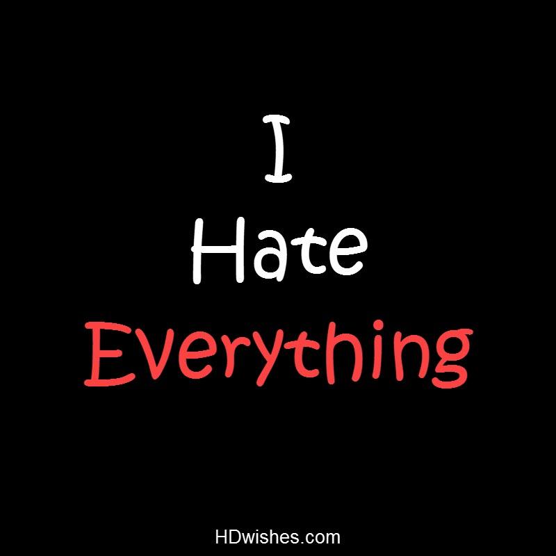 I Hate Everything Black DP