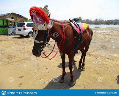 ujung-gebang-beach-beach-adjacent-to-plentong-beach-bandung-city-flowers-paris-van-java-city-which-205965829