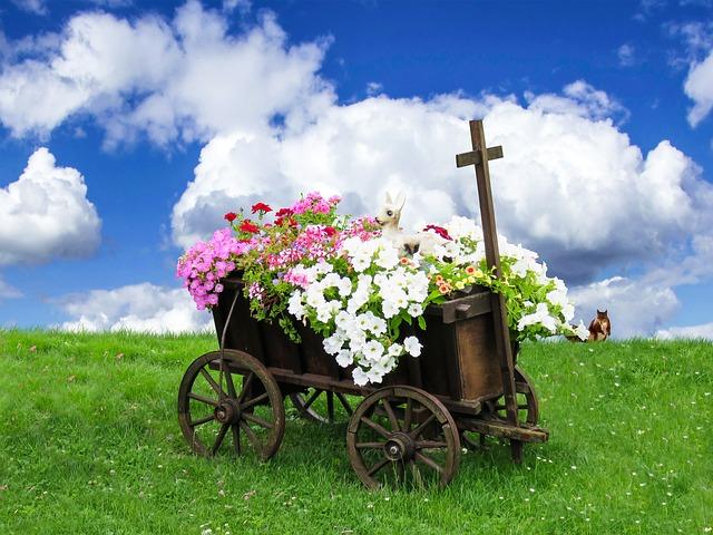 cong dung hoa da yen thao
