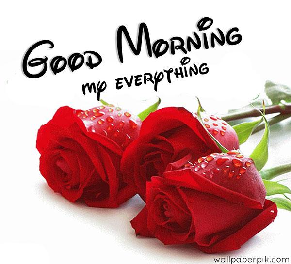 gulab good morning photo download