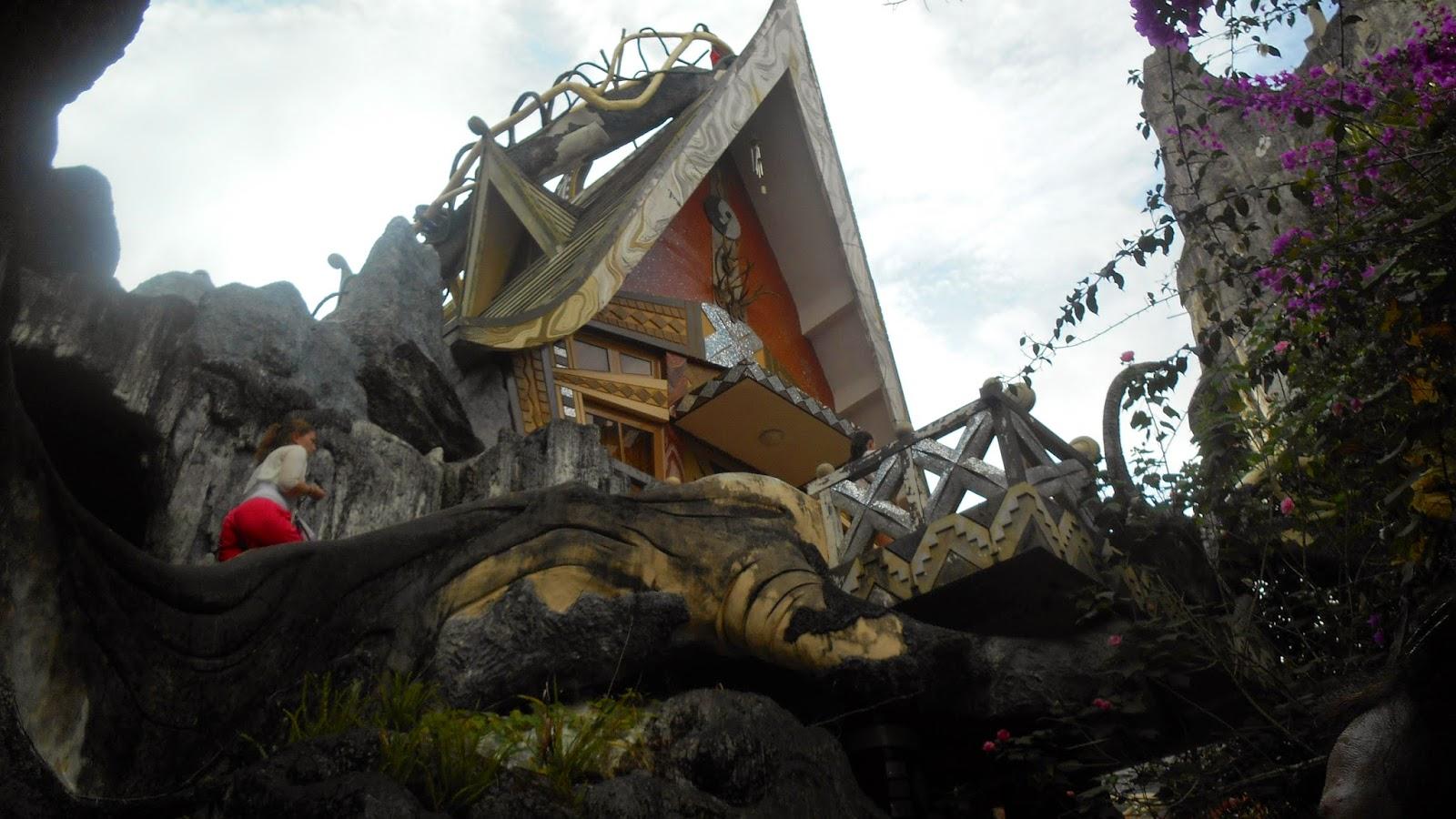 Крыша дома и лестница вокруг