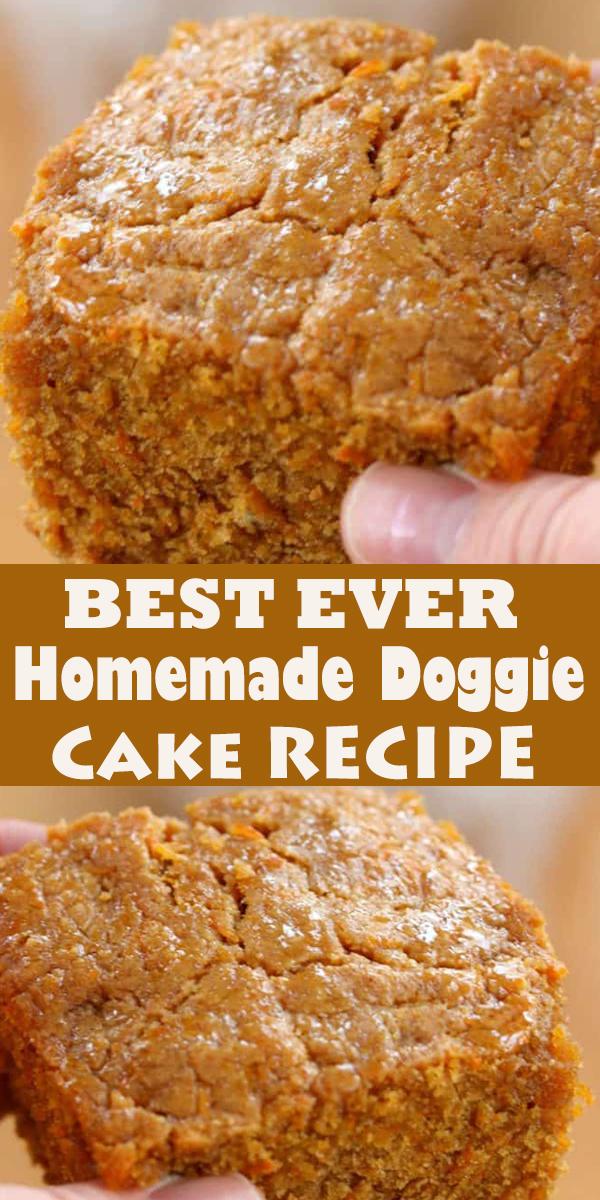BEST EVER HOMEMADE DOGGIE CAKE #BESTEVER #HOMEMADE #DOGGIE #CAKE #BESTEVERHOMEMADEDOGGIECAKE