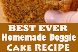 BEST EVER HOMEMADE DOGGIE CAKE