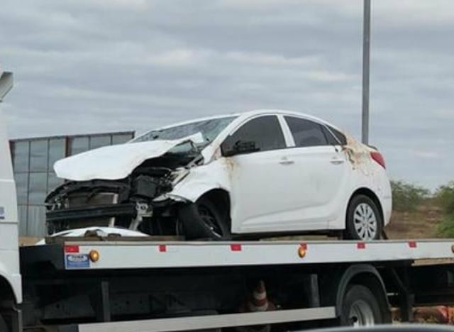 Em Piranhas, motorista sai ilesa após colidir carro de passeio  em animal na AL-225