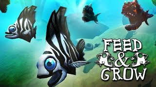 تحميل لعبة Feed and Grow 2021 للاندرويد