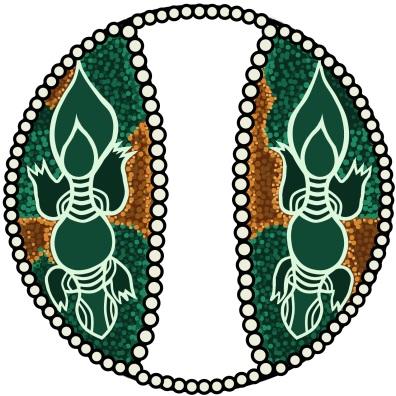 インドネシアの弦楽器 ウミガメのデザイン