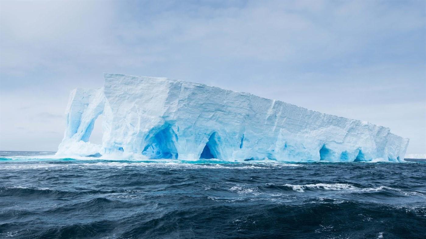 National Geographic Antarctica PREMIUM, Tema per Windows 10