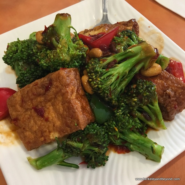broccoli with soy beef at Enjoy Vegetarian Restaurant in San Francisco, California