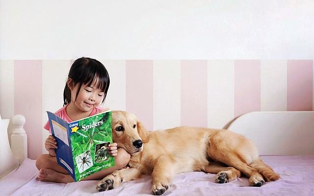Baby and animals 3