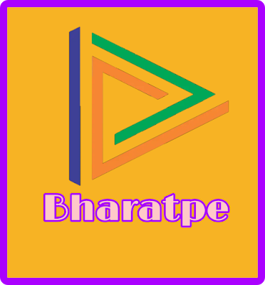 Bharatpe Digital Ledger