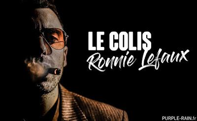 Livre Blog PurpleRain : Le Colis •• Ronnie Lefaux